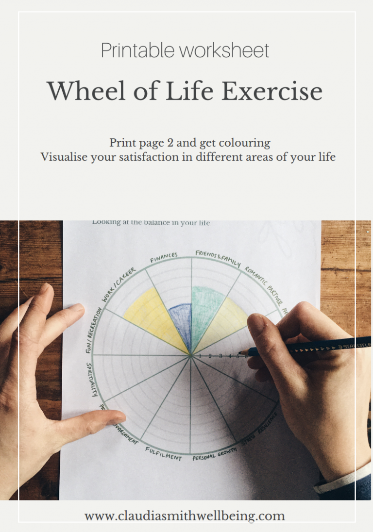 wheel of life exercise