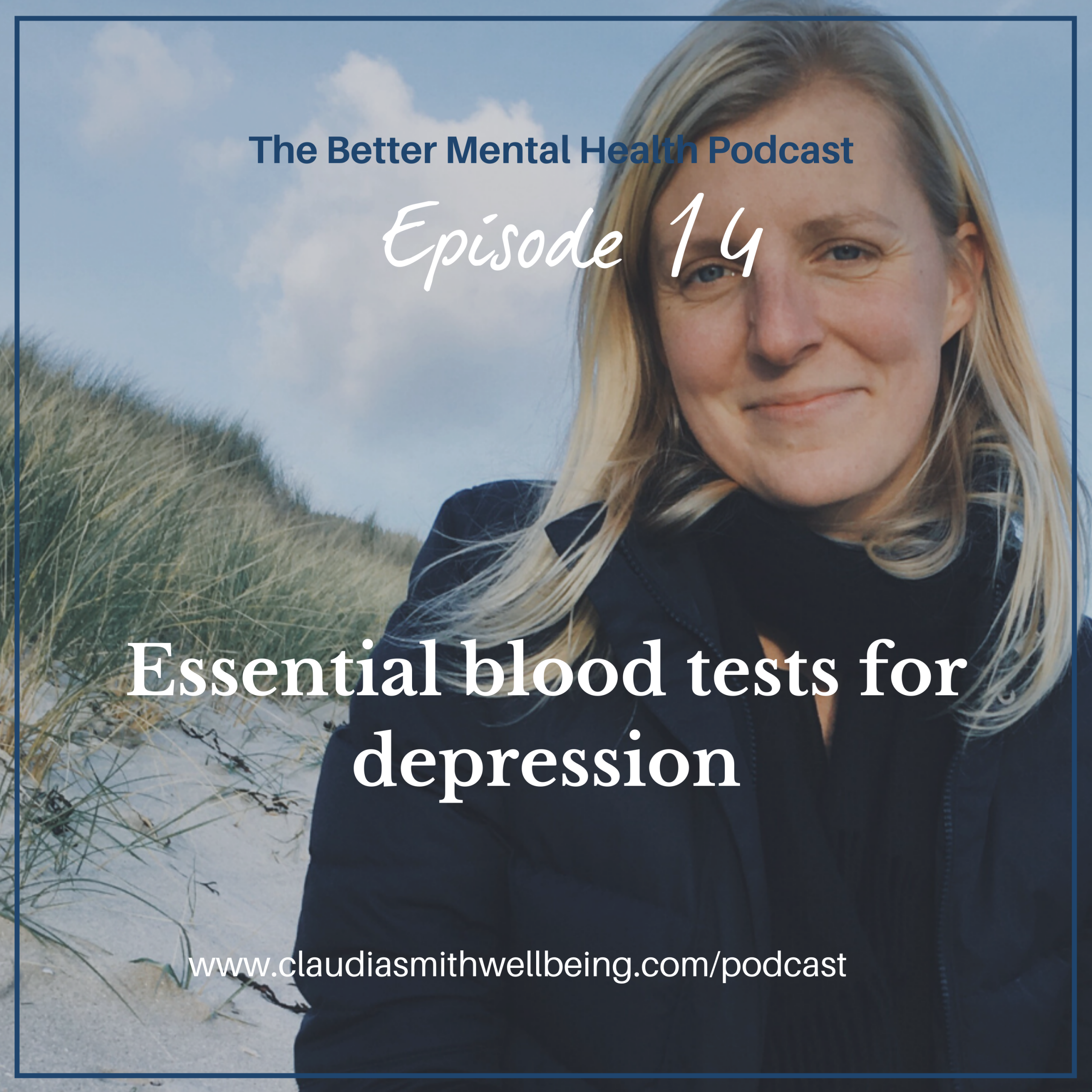Ep. 14: Blood tests for depression that I use with my clients